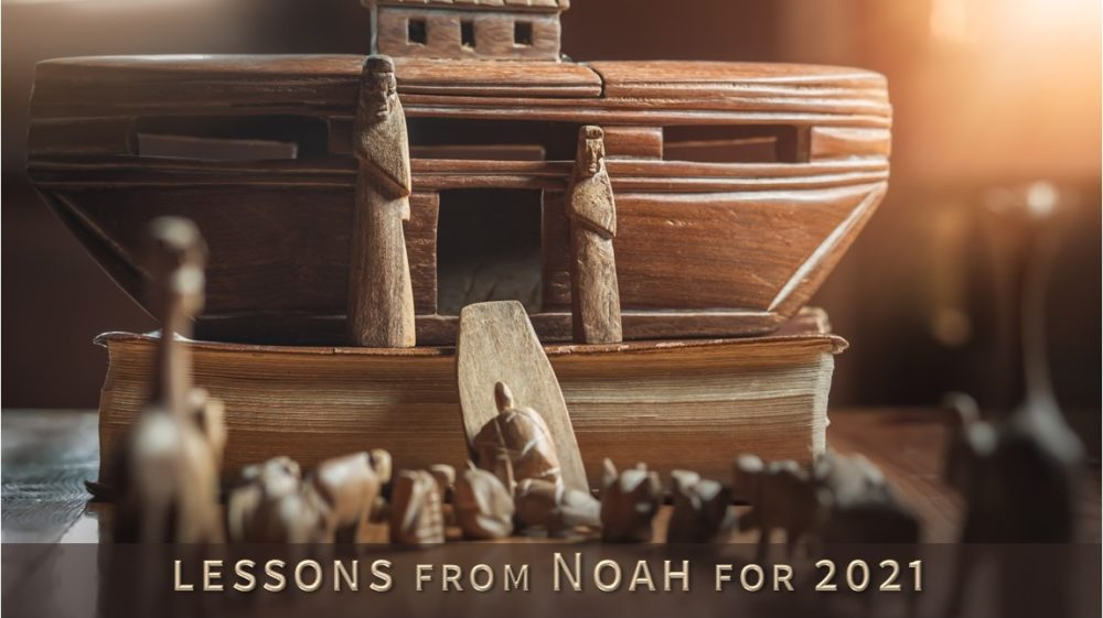 Lessons from Noah for 2021